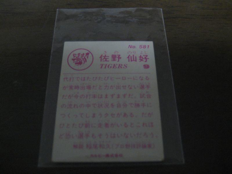 佐野仙好の画像 p1_18